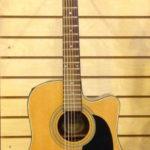 Washburn Acoustic Electric Guitar, D10C