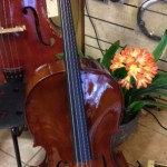 Full Size Beginner's Cello - Comes with Tuner, Bow, Soft Gig Bag and Easy Solo's Beginner Cello Book